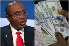 Image result for CBN promises to sustain market liquidity