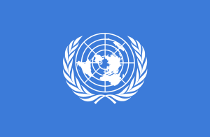 United Nations - UNited Nations Speaks On #EndSars Campaign