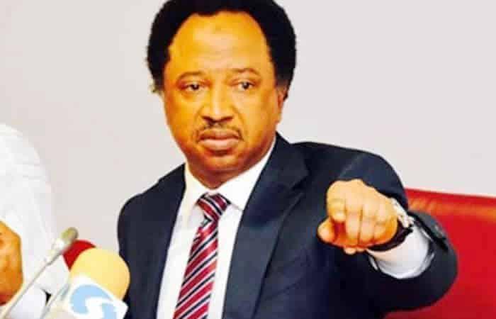 #EndSARS: Shehu Sani Slams Northern Governors Over Support For SARS