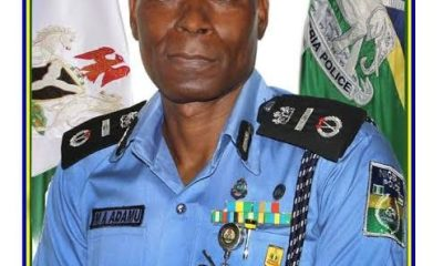 Check Out Profile Of New IGP, Adamu Mohammed