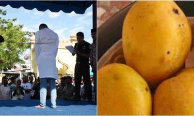 Ramadan: Man Flogged 40 Lashes For Eating Mango In Jigawa