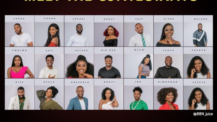 Image result for bbnaija 2019 housemates