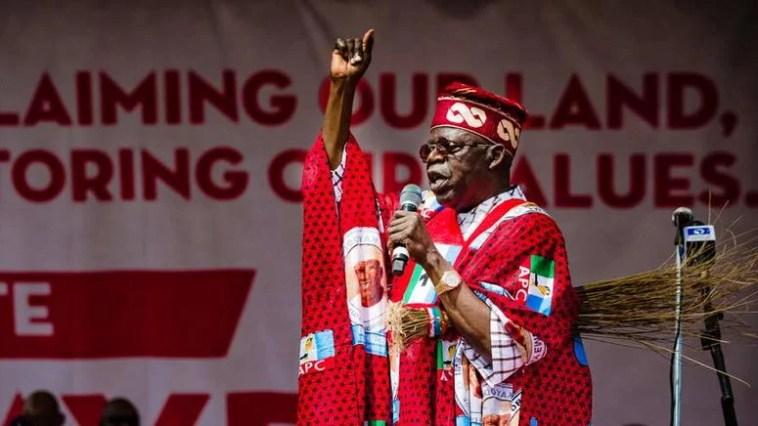 2023: Afenifere speaks on endorsing Tinubu for President