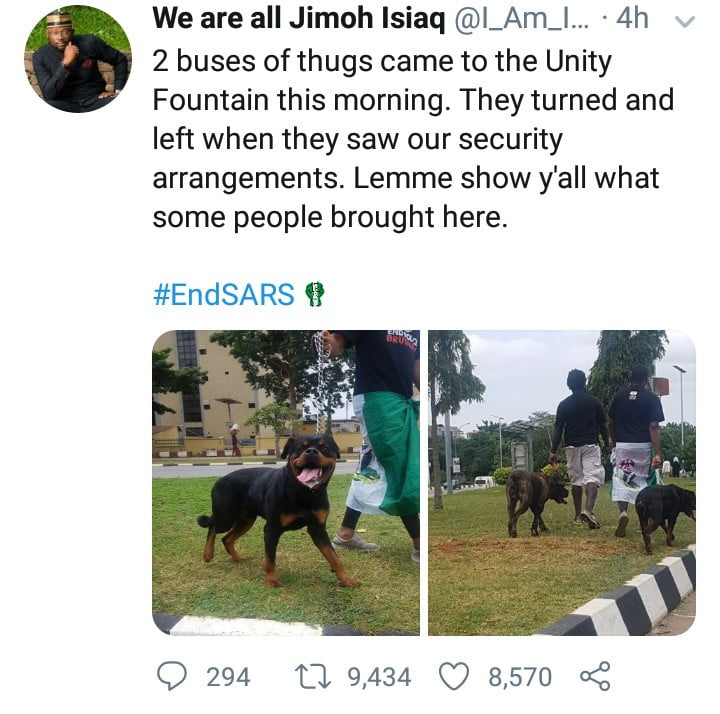 #EndSARS: Thugs Run Away On Sighting Protesters With Fierce Dogs