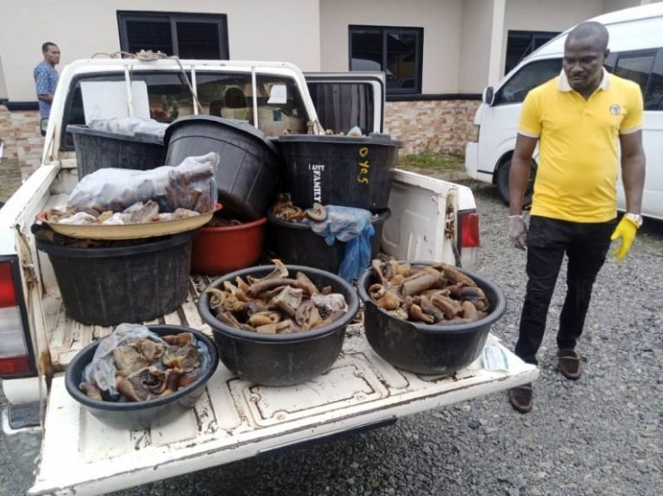 Four Women Arrested For Selling Donkey Meat In Edo - [Photos]