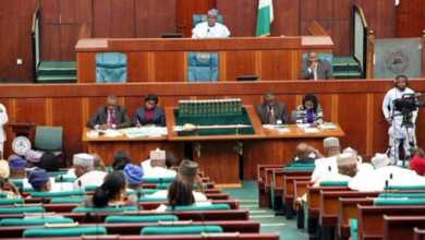 Reps probe alleged killing of five persons in Oyo by Customs officials - Naija News 247