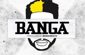 DJ ECool Banga mp3