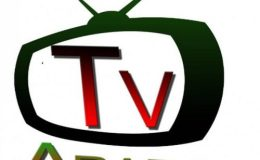 Yorubahood, Araba TV