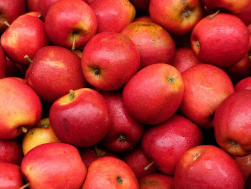 The direct effects of apples on breast cancer prevention