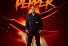 DOWNLOAD MP3: Davolee – Pepper