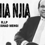 Y prince – RIP Dr Mengi (Bushoke cover)