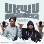 Romeo Max ft. Slow Dogg – Ukwu Nwanneka