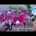 VIDEO: Nay Wa Mitego – Vua Nguo