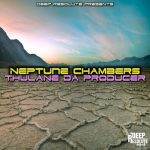 Thulane Da Producer – Neptune Chambers