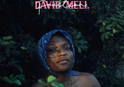 David Meli - Callin Ft. Blaqbonez Mp3 Audio Download