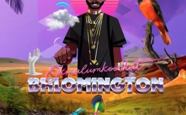 Okmalumkoolkat - Hawaiian Ft. Da L.E.S Mp3 Audio Download
