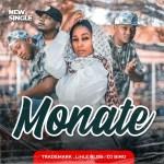Trademark Ft. Lihle Bliss, DJ Bino – Monate