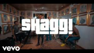 VIDEO: Broda Shaggi - Gbedu Mp4 Download
