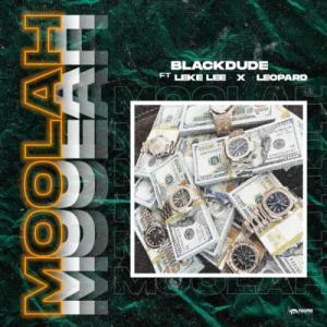 Blackdude - Moolah Ft. Leke Lee, Leopard Mp3 Audio Download