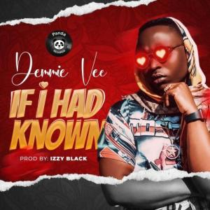 Demmie Vee - If I Had Know Mp3 Audio Download
