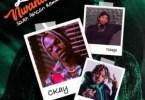 CKay - Love Nwantiti Ft. Gemini Major, Tshego (South African Remix) Mp3 Audio Download