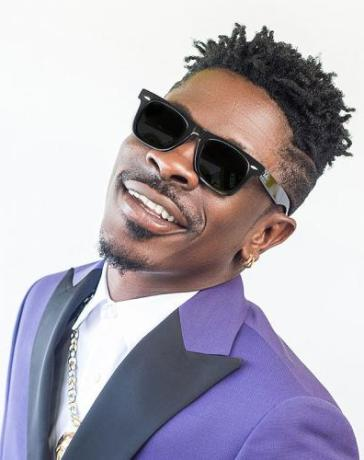 Shatta Wale - Kill And Gone Mp3 Audio Download