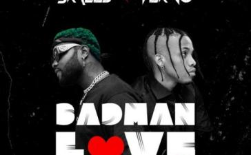 Skales Ft. Tekno - Badman Love (Remix) Mp3 Audio Download