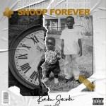 Kweku Smoke – Ayalolo Ft. Dammy Krane