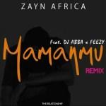 Zayn Africa – Mamanmu (Remix) Ft. DJ Ab, Feezy