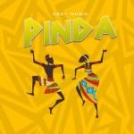 Nedy Music – Pinda
