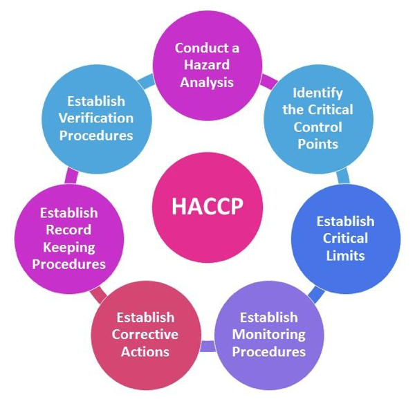 The 7 Principles of HACCP, Explained