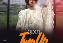 Qdot Turn Up