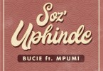 Bucie Soz'Uphinde Artwork