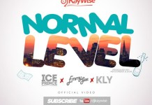 DJ Kaywise Normal Level Video