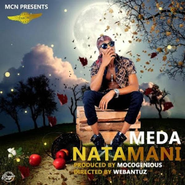Meda Natamani Artwork