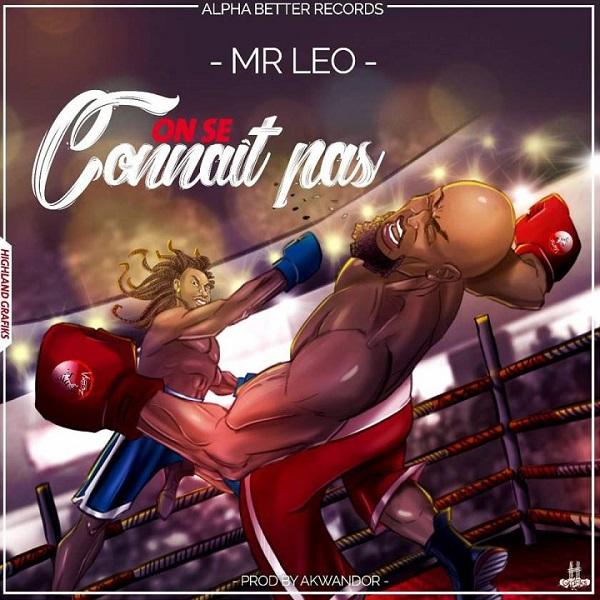 Mr. Leo On Se Connait Pas Artwork