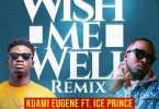 Kuami Eugene Wish Me Well (Remix) Artwork