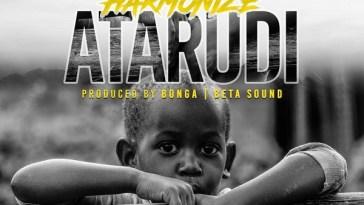 Harmonize Atarudi Artwork