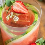 Eau de Printemps, a Perrier Strawberry Watermelon Vodka Spritz