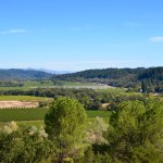 Great for Groups: Sterling Vineyards