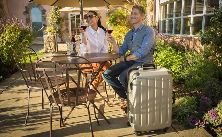 VinGardeValise Silver wine luggage