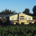 Louis Roederer Acquires Sonoma's Merry Edwards Winery