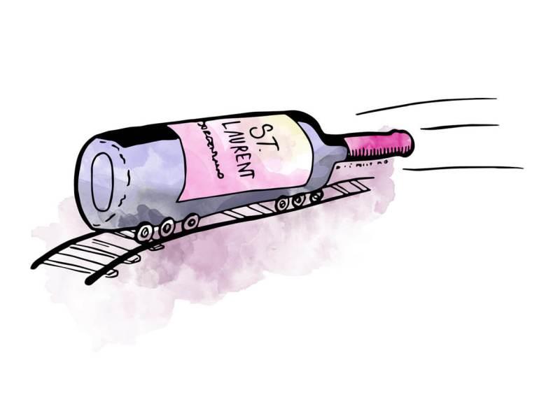 st-laurent-bottle-illustration-winefolly