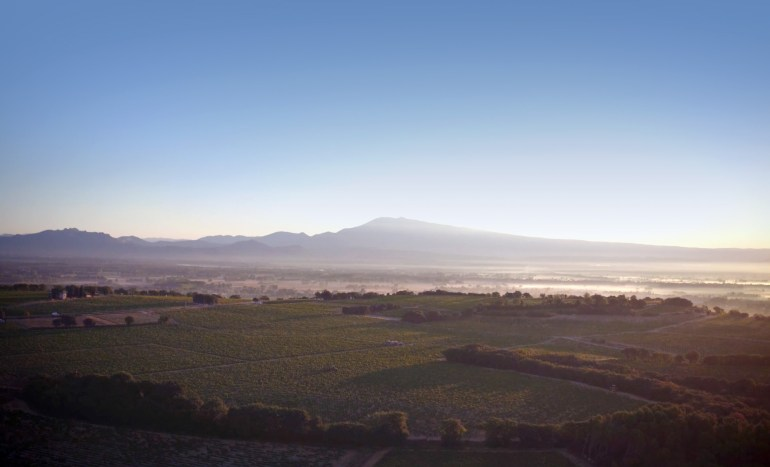 looking-over-la-crau-plateau-clos-st-jean-cdp-rhone-vineyards