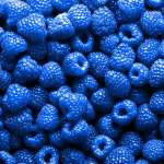 blue-raspberries-768x768