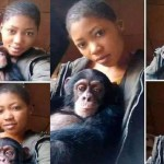 Slay Queen dating a monkey Because she doesn't want Broken heart