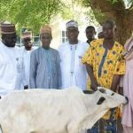 Fulani Men Who Pledged To Gift A Cow To President Buhari After The Election, Redeem It [PHOTO]