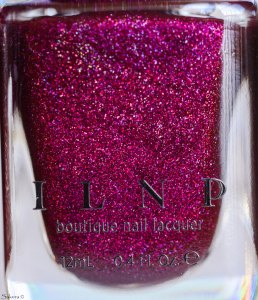 ILNP holiday 2015