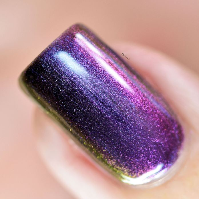 ILNP TILTED 6