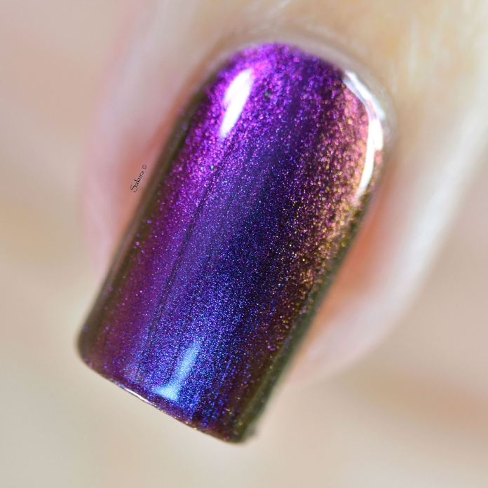 ILNP TILTED 8